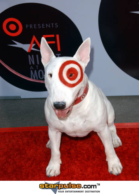 It s the final showdown walmart canada vs target canada What kind of dog is the target mascot